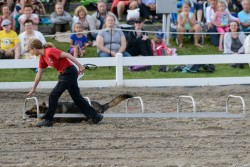 RCMP Musical Ride Sunset Ceremony 2015-371