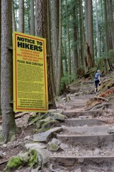 Grouse Grind May 2016-318