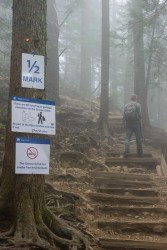 Grouse Grind May 2016-342