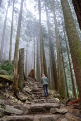 Grouse Grind May 2016-356