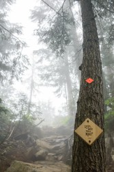 Grouse Grind May 2016-373