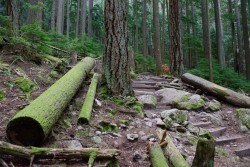 Grouse Grind May 2016-394