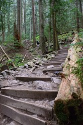 Grouse Grind May 2016-408
