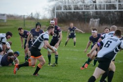 Wolves Rugby May 2016-311