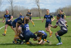 Wolves Rugby May 2016-334