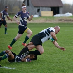 Wolves Rugby May 2016-416