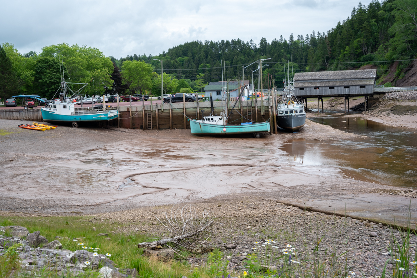 Fundy Trail NB July 2019_003