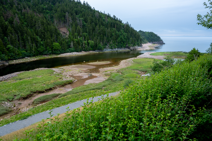 Fundy Trail NB July 2019_089